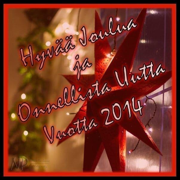 Rauhallista joulua ja onnellista uutta vuotta 2014!
