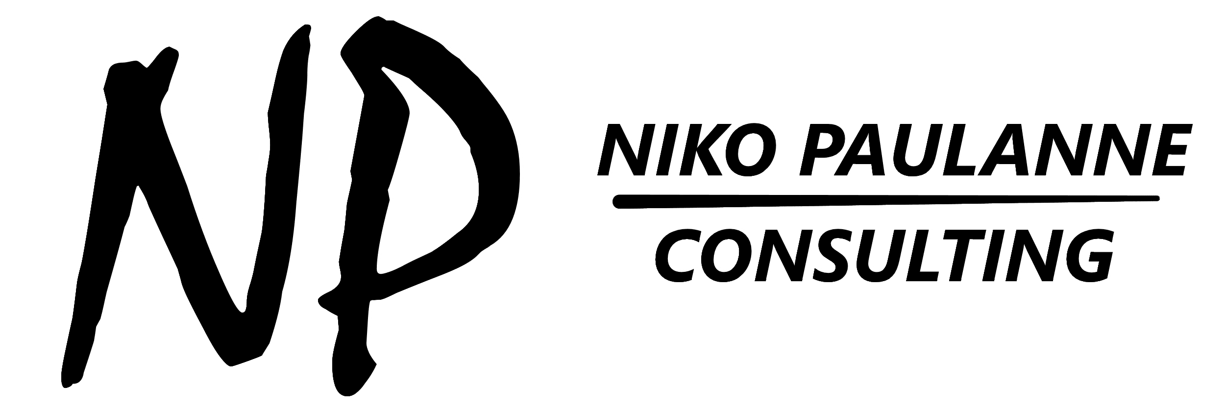 Niko Paulanne Consulting